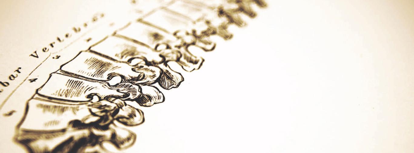 Spine-Background